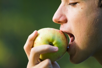 A boy takes a bite of a recently picked apple, Sweden. Adobe RGB.