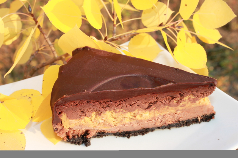 Double Chocolate Pumpkin Cheesecake1